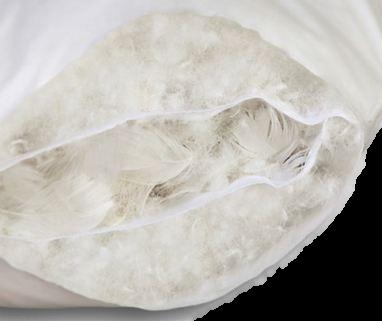 Oreiller naturel plume - Laver des oreillers en plume ...